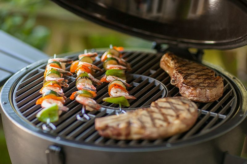 Affordable Enclosed Charcoal Grills