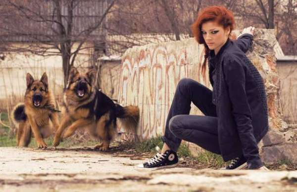 Feral Dog Photoshoots