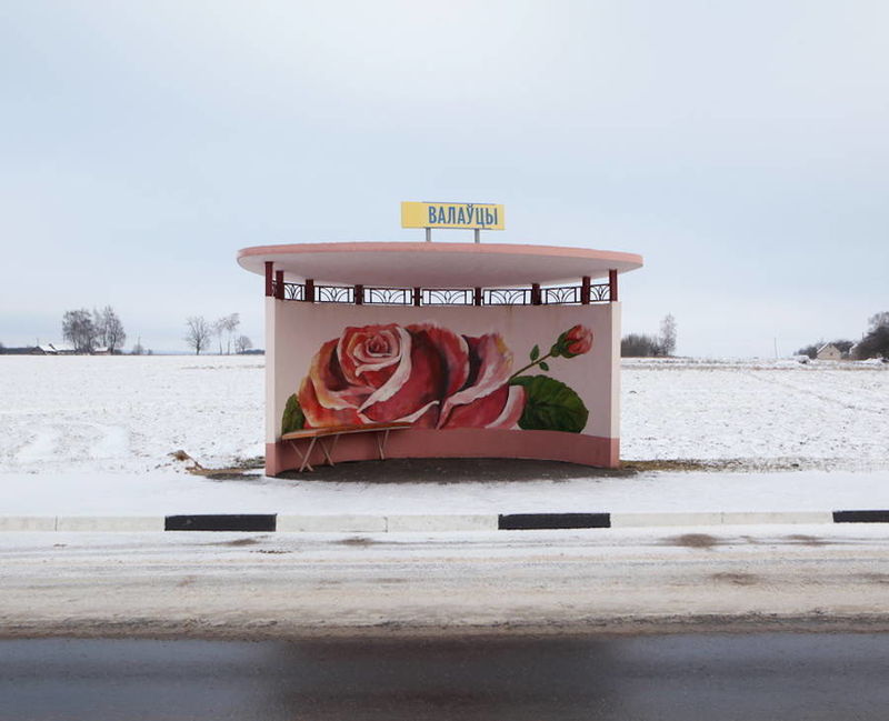 Floral Bus Shelter Photography