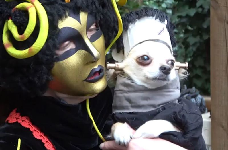 Costumed Canine Events
