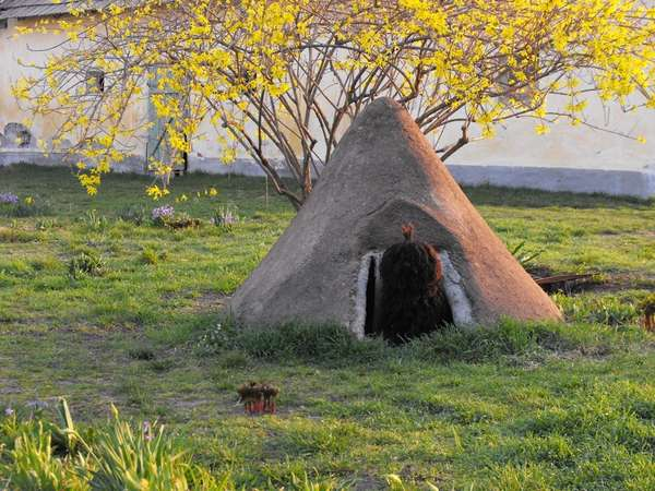 Canine Hobbit Homes