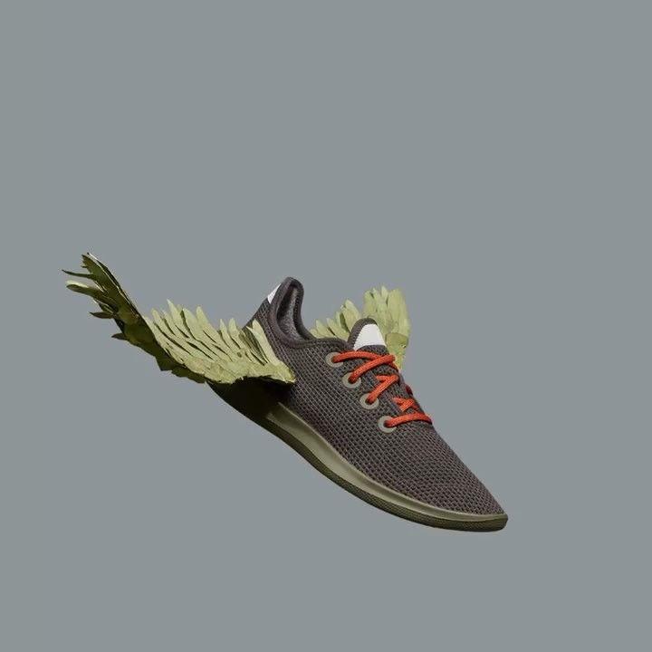 Endangered Bird-Inspired Sneakers