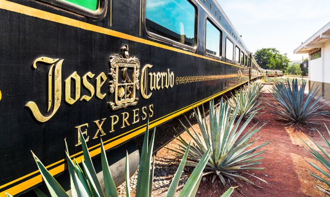 Tequila Brand Train Tours