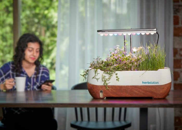 Self-Sufficient Indoor Gardens
