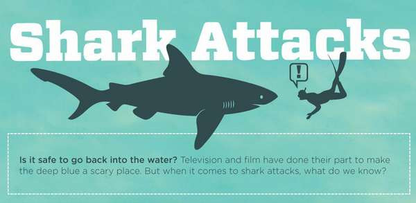 Terrifying Aquatic Creature Graphs Anatomy Of A Shark Attack