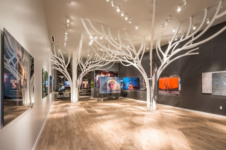 Tree-Filled Gallery Interiors