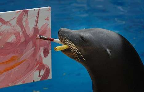 Art Made By Animals