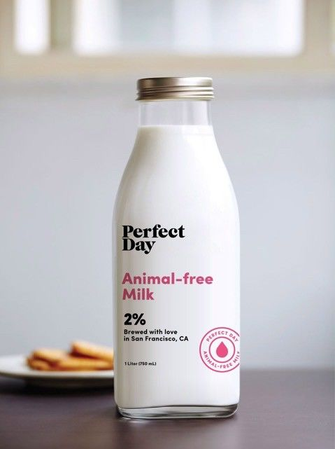 Sustainable Milk Alternatives