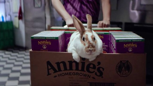 Bunny-Filled Brand Campaigns