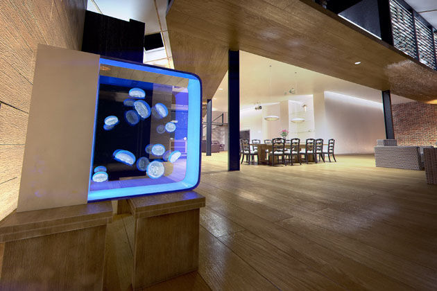 Wonderbaarlijk 45 Modern Aquarium Designs MT-67