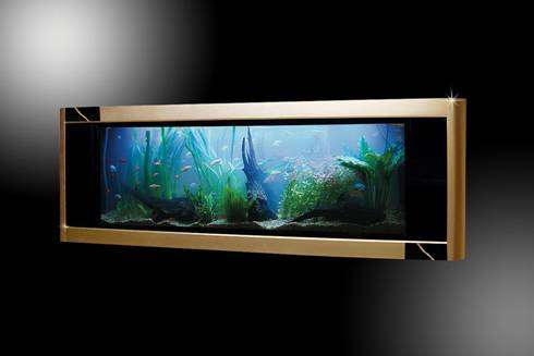 £3 Million Aquariums