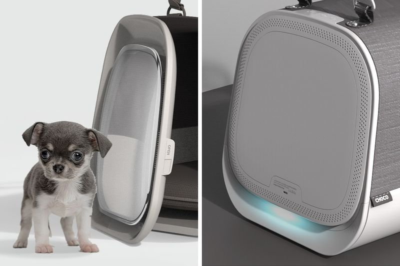 Air-Purifying Pet Carriers
