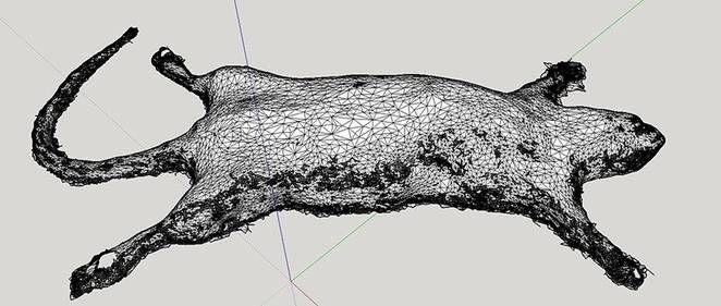 3D-Printed Rats
