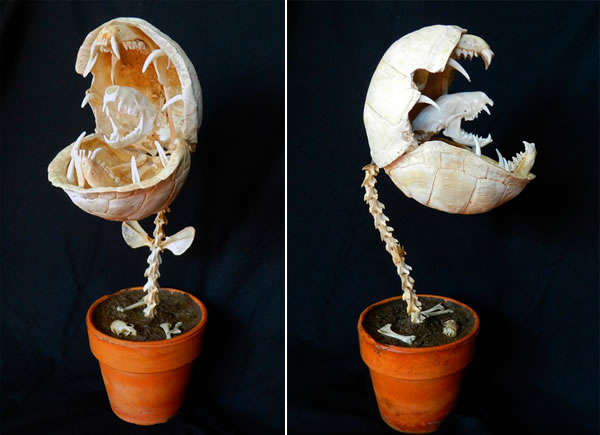 Alienesque Plant Sculptures