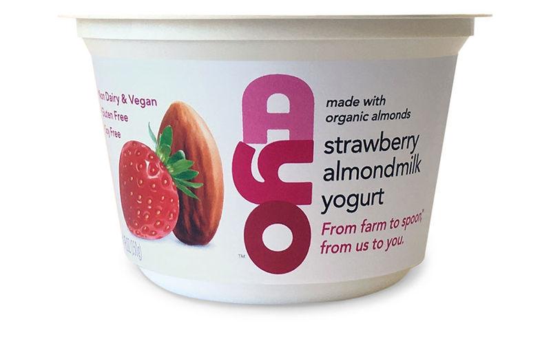 Flavor-Rich Plant-Based Yogurts