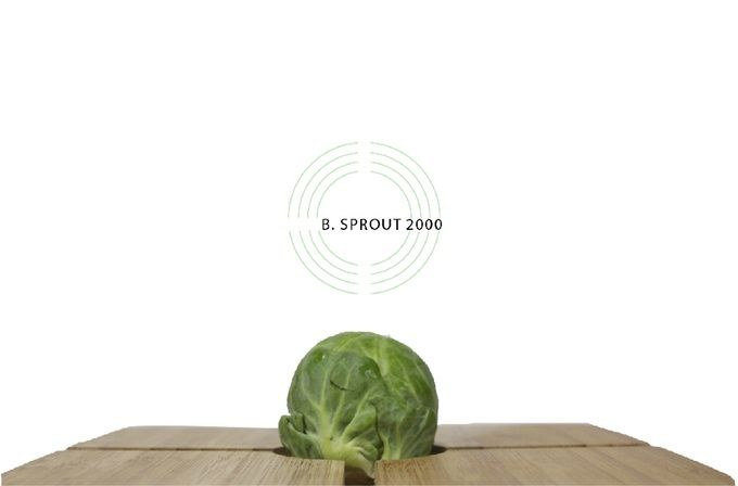 Brussels Sprouts Cutting Boards