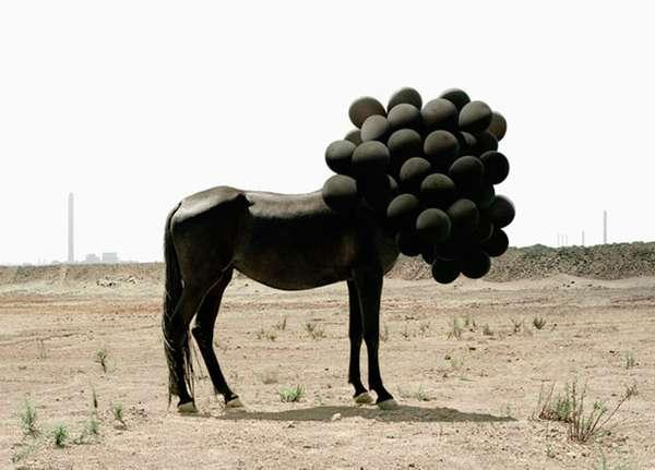 Surreal Balloontography