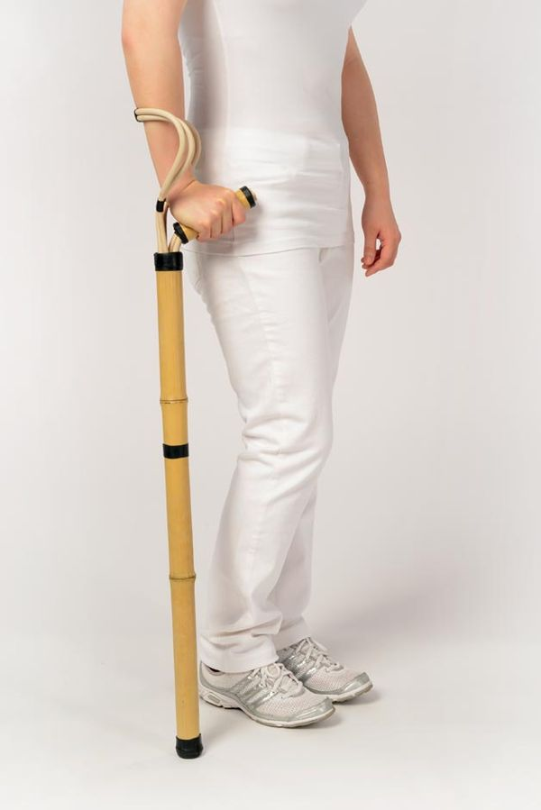 Sustainable Walking Sticks