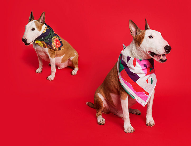 Socially Conscious Bandanas