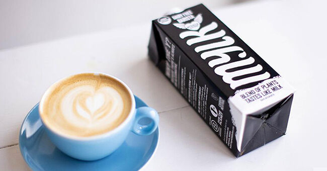 Barista-Quality Milk Alternatives