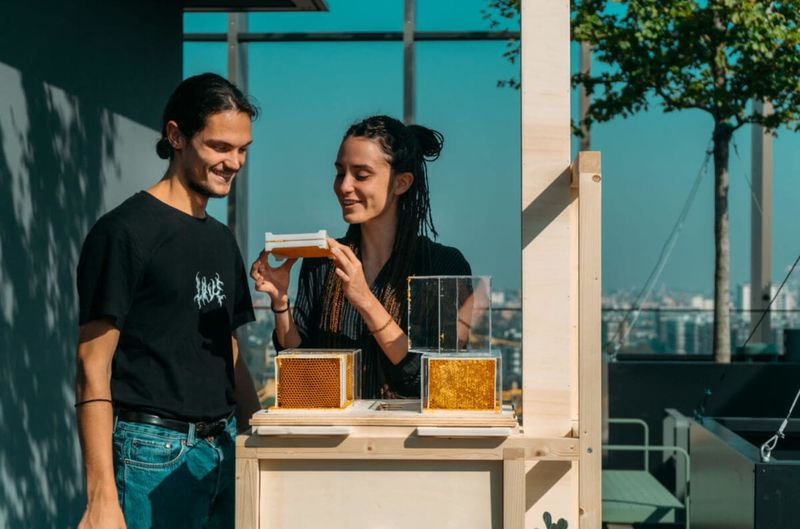 Urban-Friendly Beekeeping Equipment