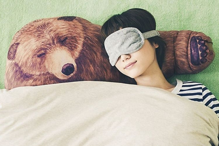 Huggable Bear Pillows