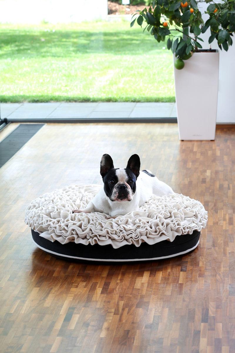 Floral Dog Beds