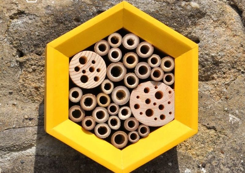 Haute Flying Insect Hotels