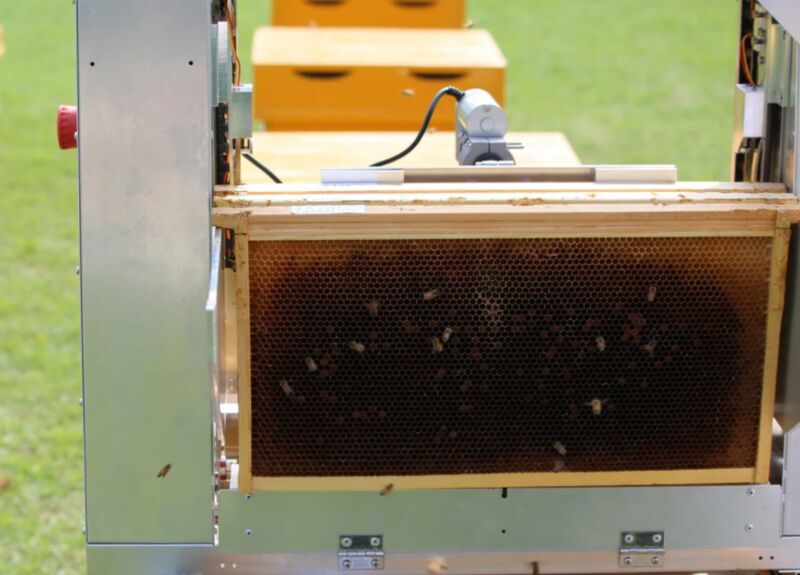 Automated Beekeeping Devices