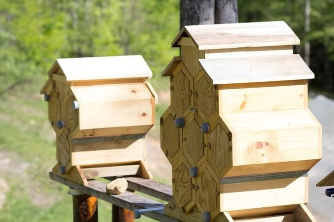 Reimagined Beekeeping Systems