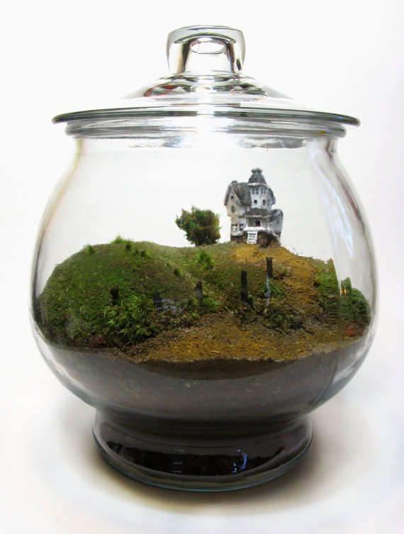 Miniature Movie Scene Terrariums