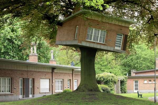 Ironic Senior Tree Houses