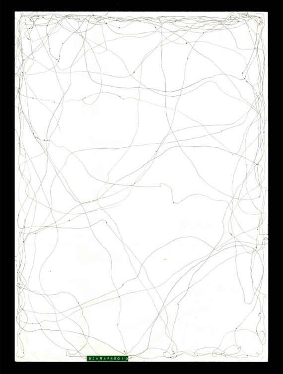Bug Path Paintings