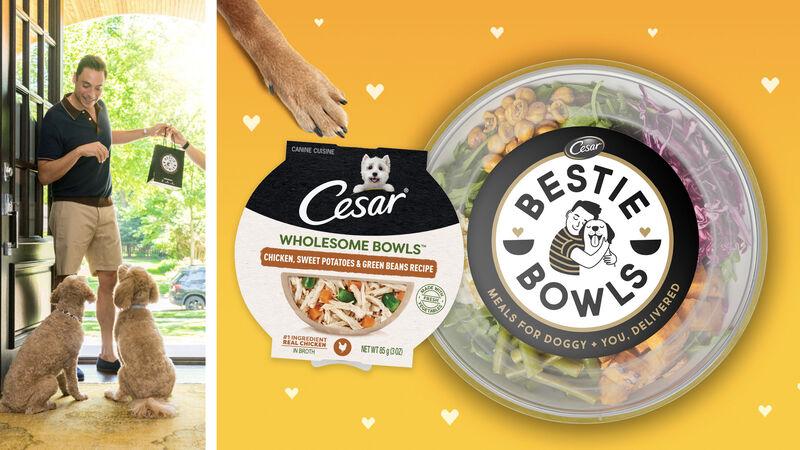 Pet-Matching Meal Bowls