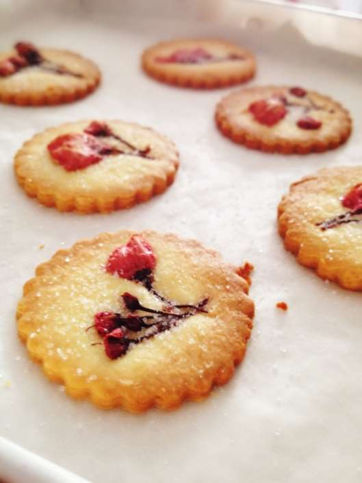 Sweet Cherry Blossom Cookies