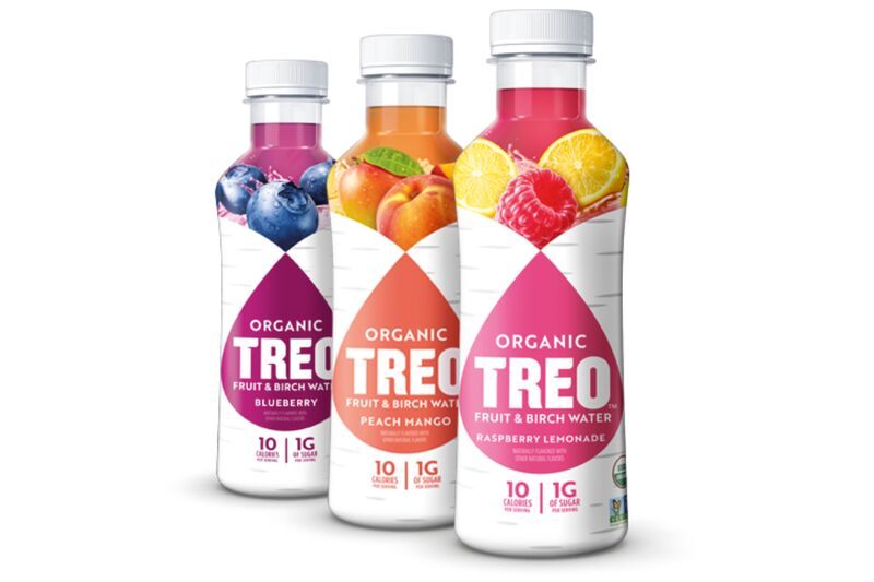 Fruity Birch Water Beverages