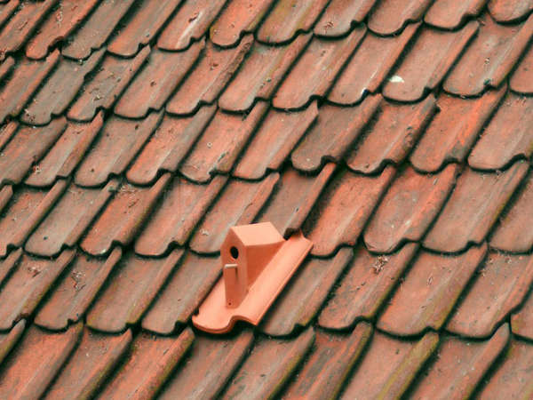 Bird House Shingles Bird House Tiles