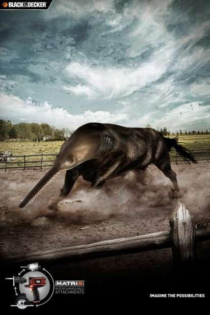 Hybrid Animal Ads
