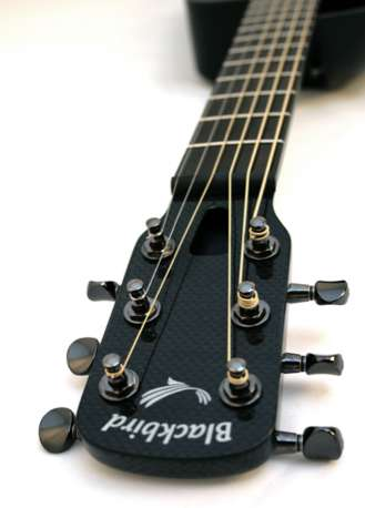 Carbon Fiber Guitars