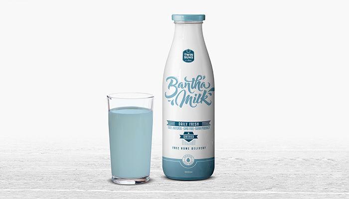 Intergalactic Milk Branding