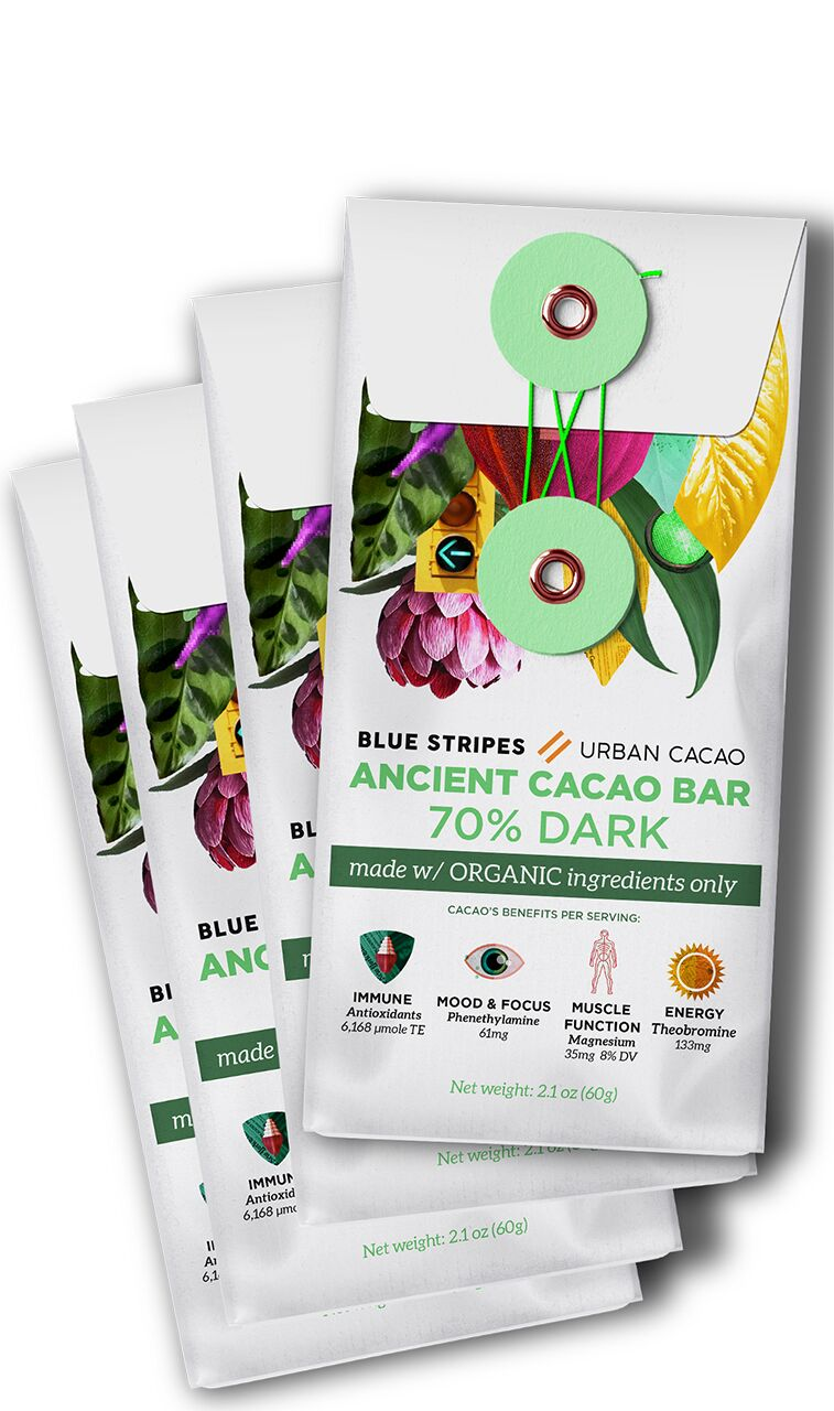 Free-From Raw Cacao Bars