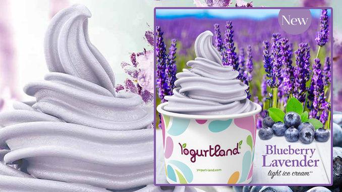 Limited-Edition Artisanal Ice Creams
