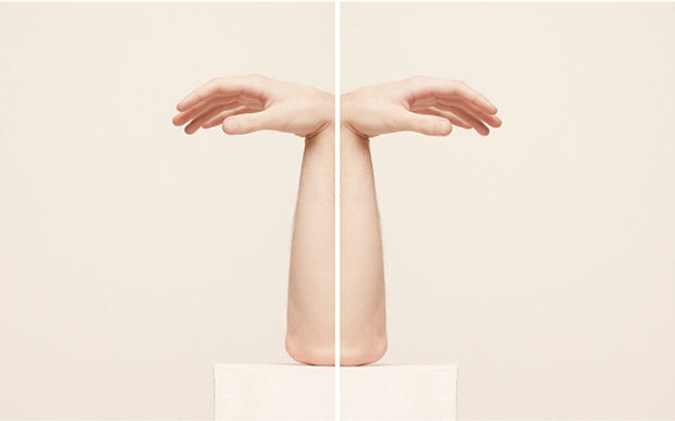 Fleshy Symmetrical Sculptures