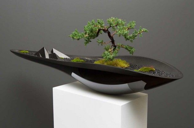 Contemporary Bonsai Planters