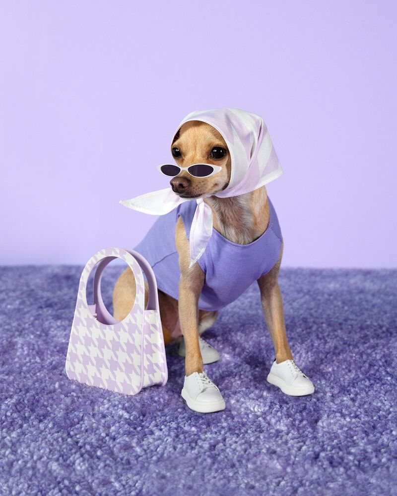 Dog-Styled Fashion Lines