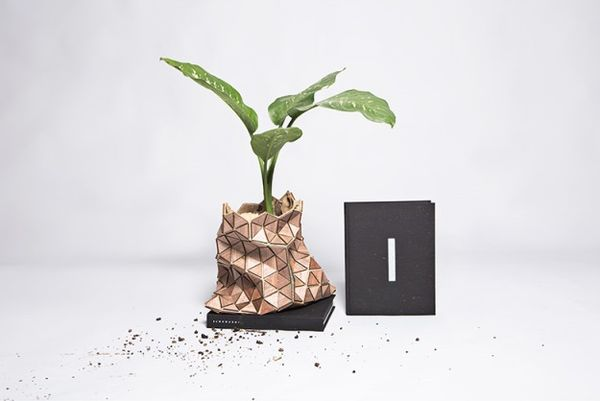 Book Cover Plant Vases