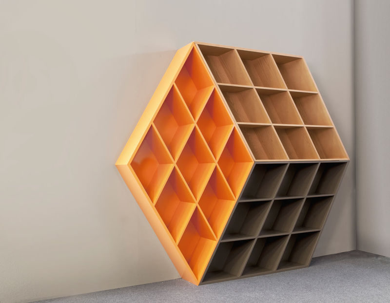 Cube-Shaped Bookcases : bookcase