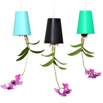 225 & Upside Down Flower Pots : Boskke Sky Planters