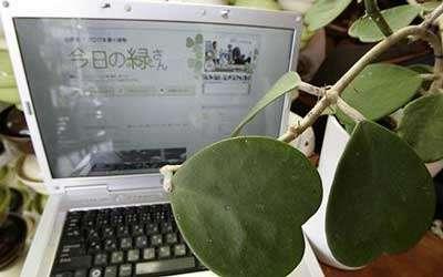 Botanical Bloggers