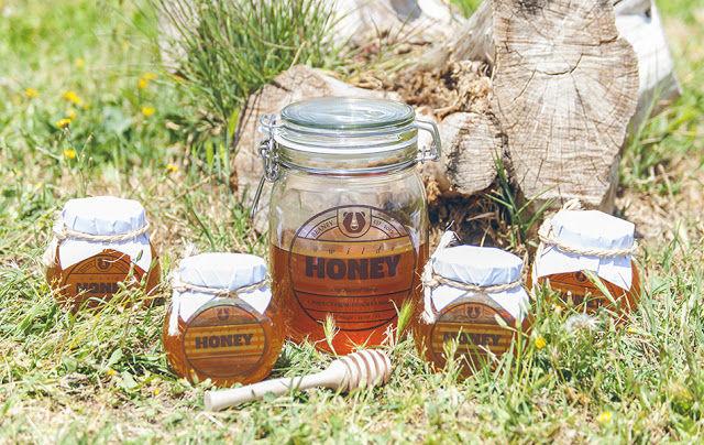 Holistic Honey Branding